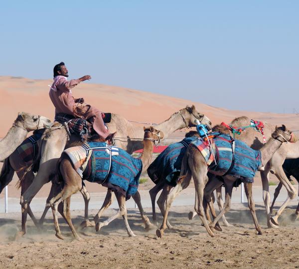 Arabian Desert, photo by Sallie Volotzky