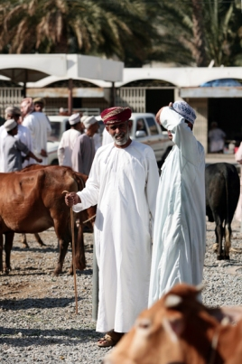 Nizwa auction, photo courtesy of Elite Tourism, Oman