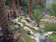 falaj irrigation in Misfat Al Abryeen, Oman, photo courtesy of Elite Tourism