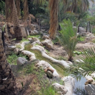 falaj irrigation in Misfat Al Abryeen, Oman, photo courtesy of Elite Tourism