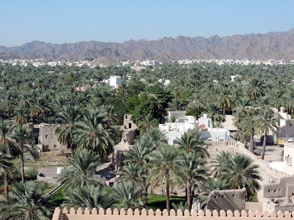 view from Nizwa Fort, Nizwa, Oman, photo by Sallie Volotzky